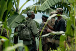The Congo-Rwanda Offensive: Wrapping Up?