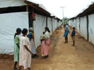 Humanitarian Ceasefire in Effect in Sri Lanka
