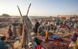 New IDP Arrivals at Um Baru, North Darfur (January 2015)