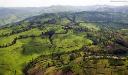 Masisi Territory, North Kivu Province, Democratic Republic of the Congo
