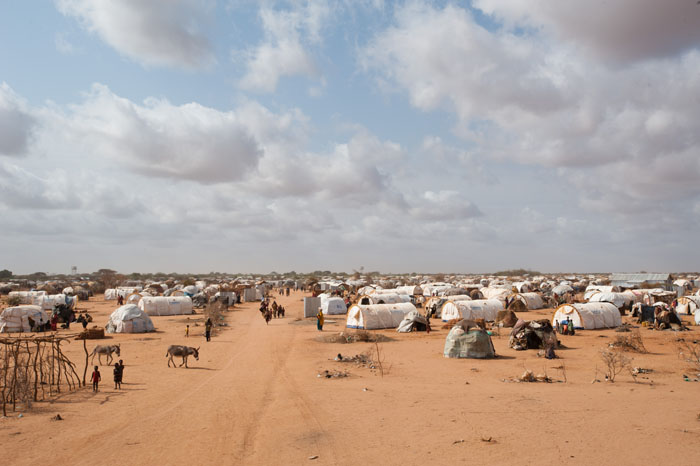 Report: A Diplomatic Surge to Stop Somalia's Famine
