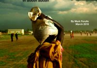 Safeguards to Peace: Steps Toward Governance in South Sudan
